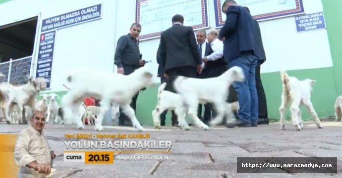 AKSU TV'DEN KANBUR'A ÖZEL
