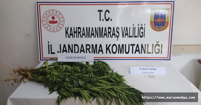 JANDARMA YAKALIYOR